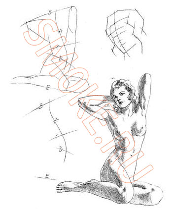 Как нарисовать человека карандашом поэтапно Платон Нещукин - Как .  Оооочень нравится Tatoxa: Очень живо...