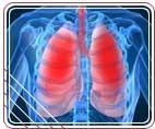 Влияние курения на здоровье